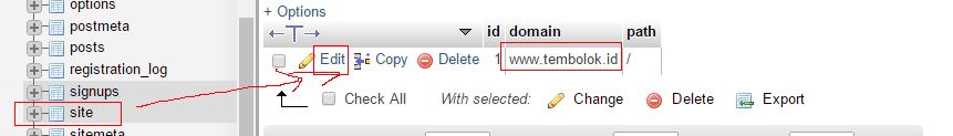 merubah site table record pada database wordpress untuk merubah non www menjadi www