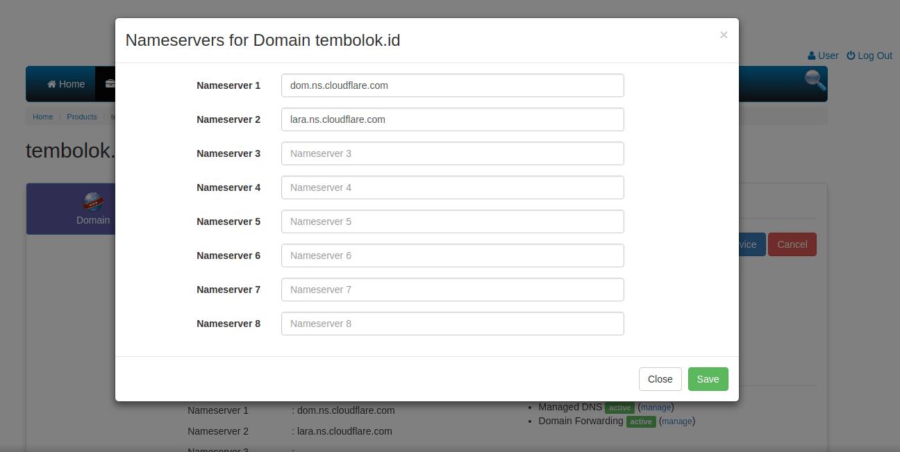 Memasang DNS Cloudflare CDN ke domain