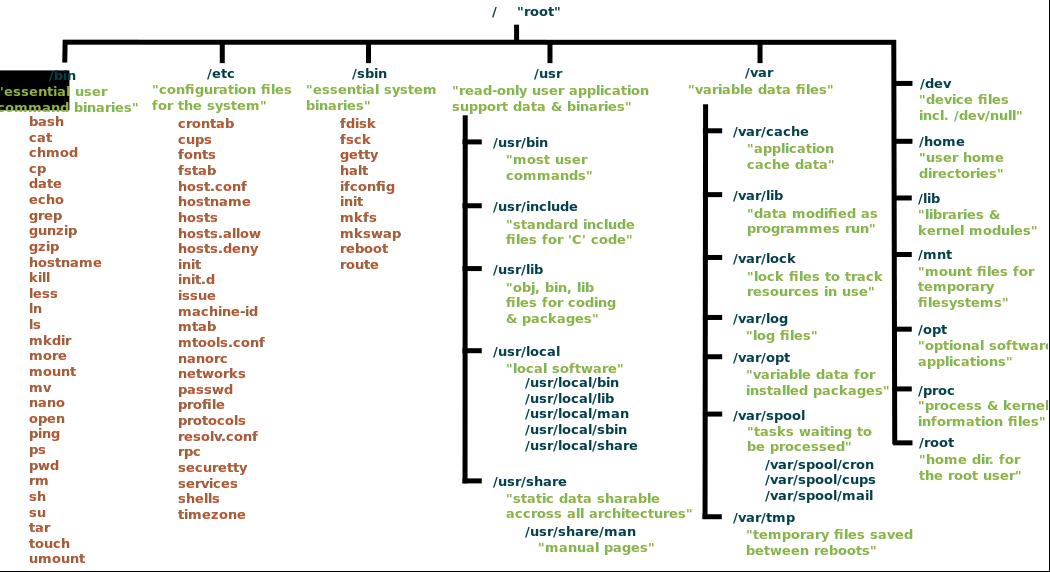 stuktur directory tree pada linux