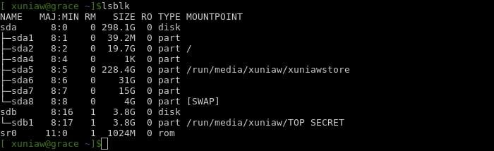melihat mount pint drive pada linux