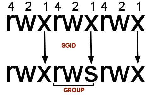 cara setting SGID permission di linux
