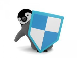privilage sistem pertahanan akhir linux terhadap hacker dan exploit