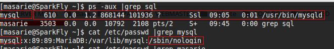 user dan shell linux
