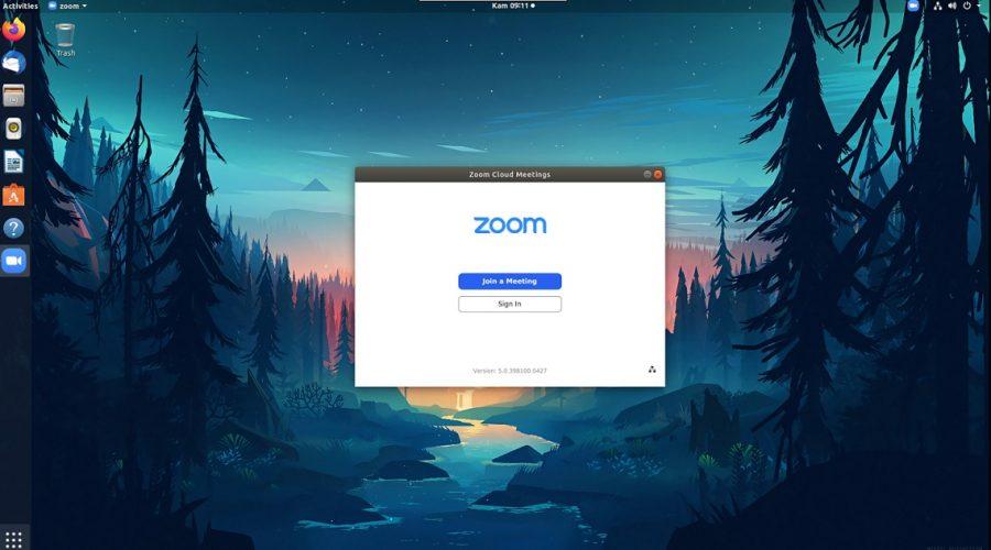 zoom di ubuntu linux